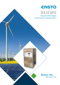 Brochure: D.E.I.E 2012